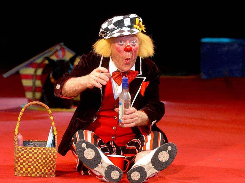 circus pepino 2017