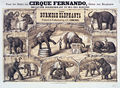 Edmond's Elephants poster.jpeg