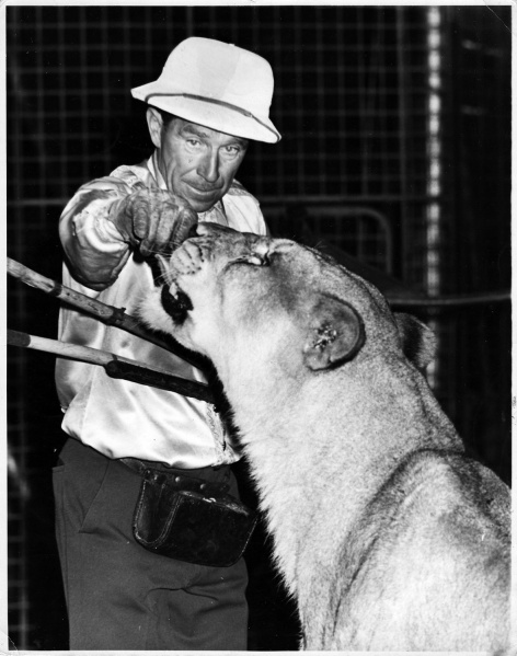 File:Fritz Schulz and lion (Sole Bros.).jpg